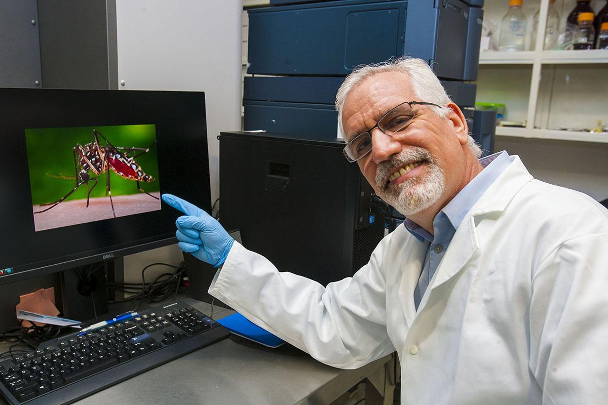IPN, Chikungunya, Estudios, Investigación,
