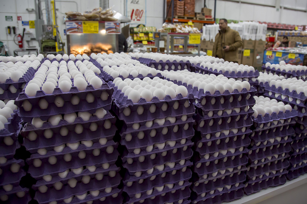 Huevo, mercados, canasta básica, jitomate,