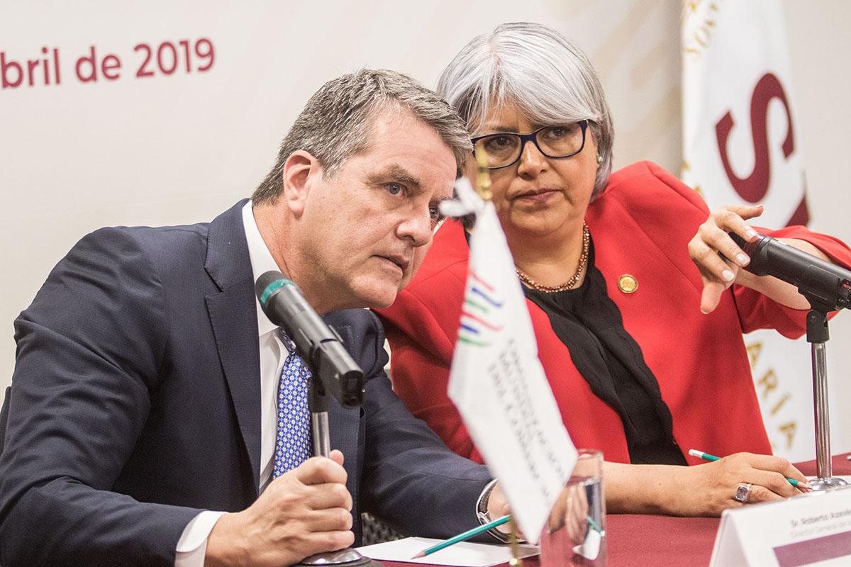 Organización Mundial del Comercio, OMC, Roberto Azevedo, ley de la selva,