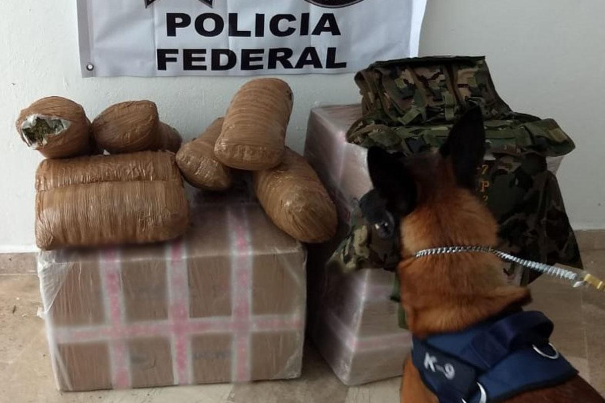 Aeropuerto de la CDMX, Policía Federal, Cocaína, Colombia, Hong Kong, División antidrogas,