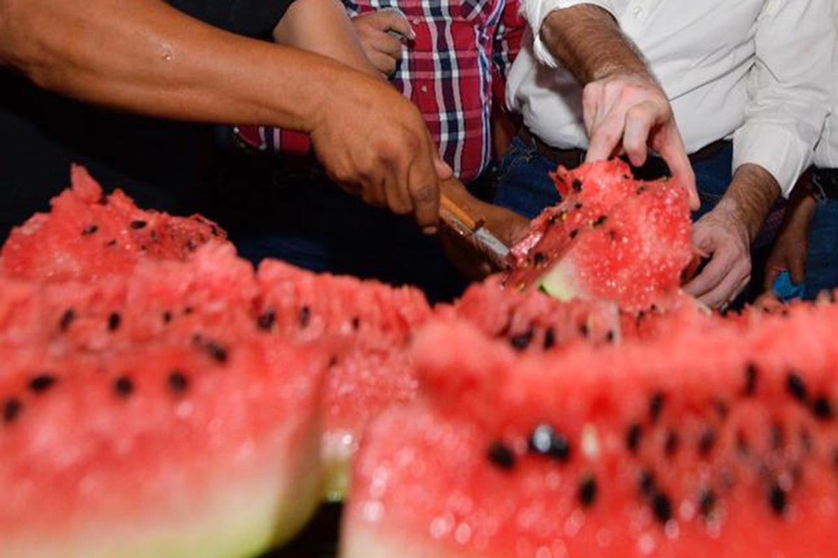 Sandía, frutas, productores,