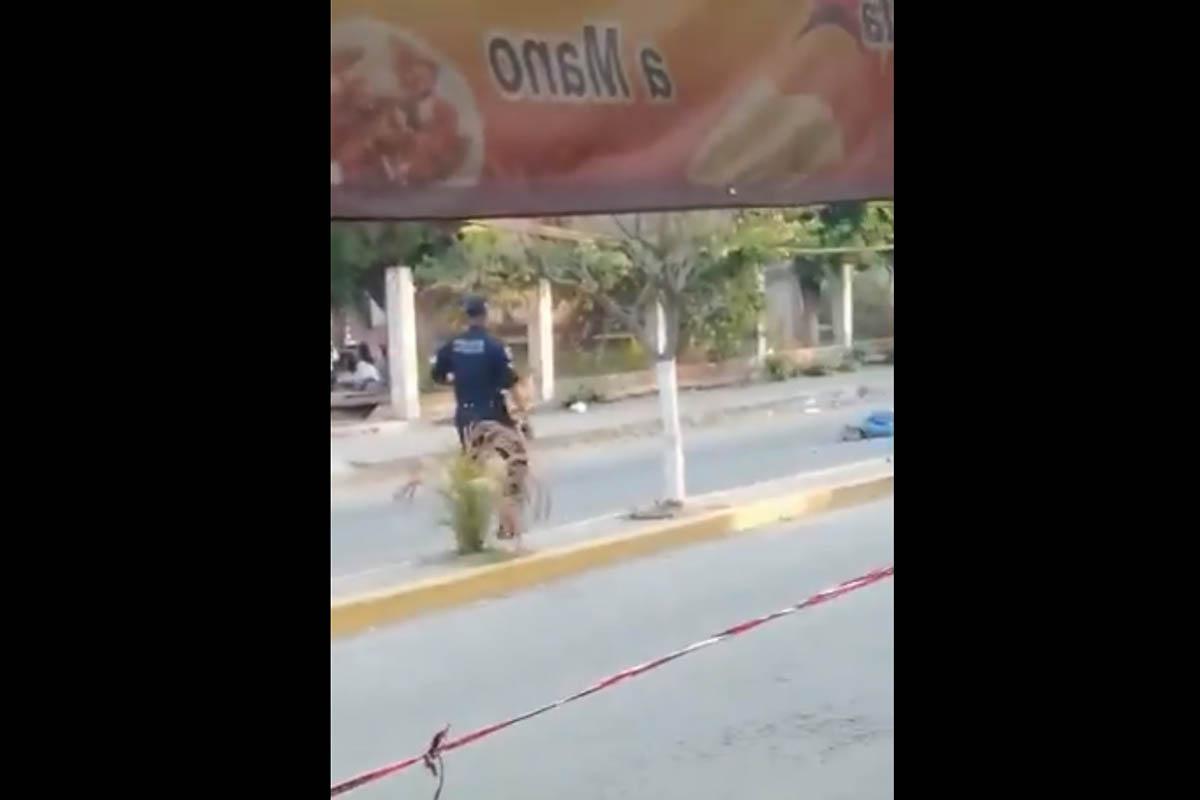 Morelos, Custodios, ataque,