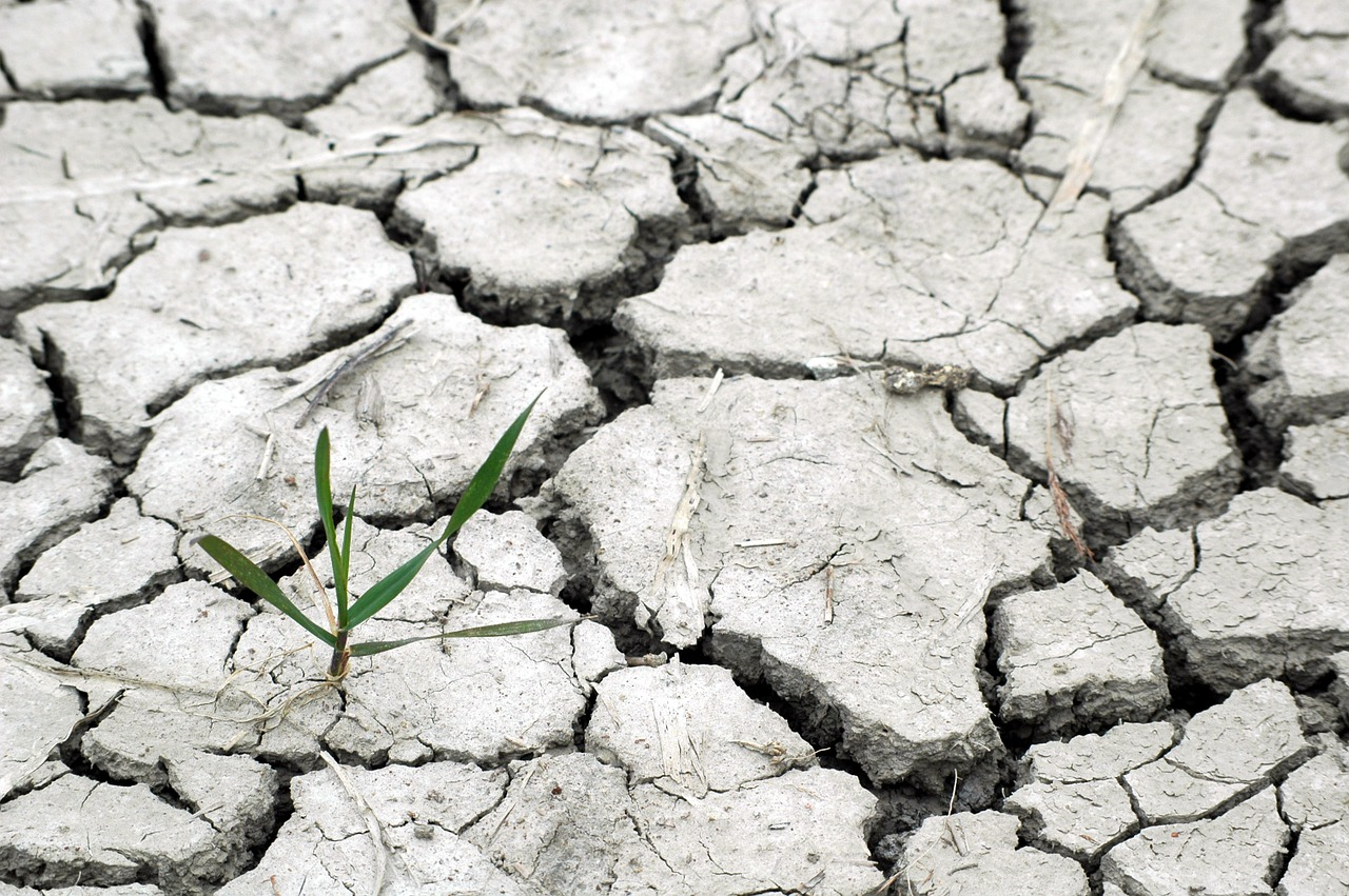 cambio climatico, sequía,