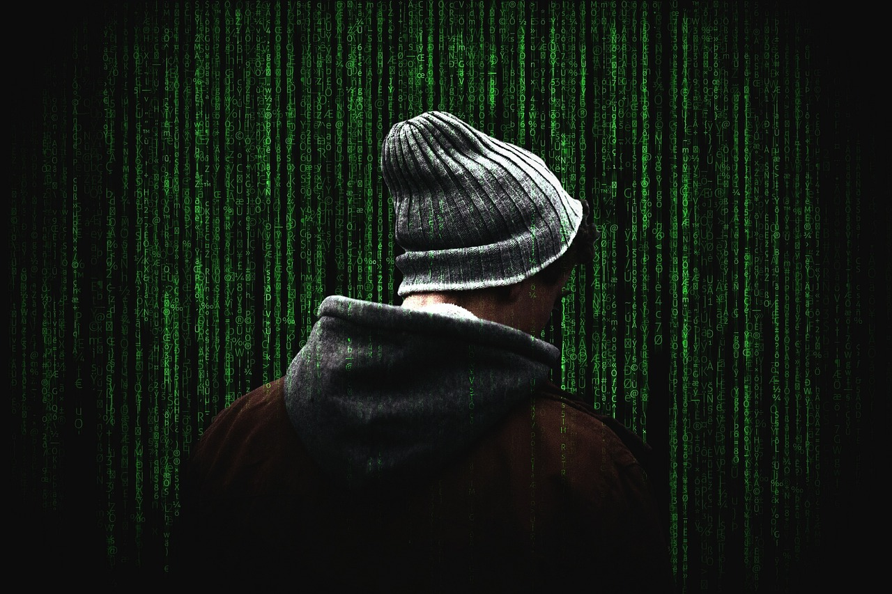ciberseguridad, fraudes,