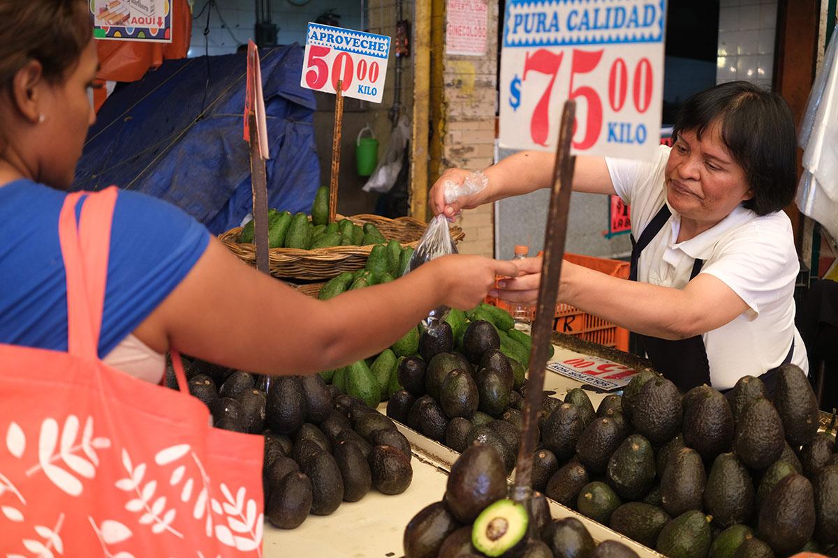 Aguacate, Central de Abasto, precios, mercados,