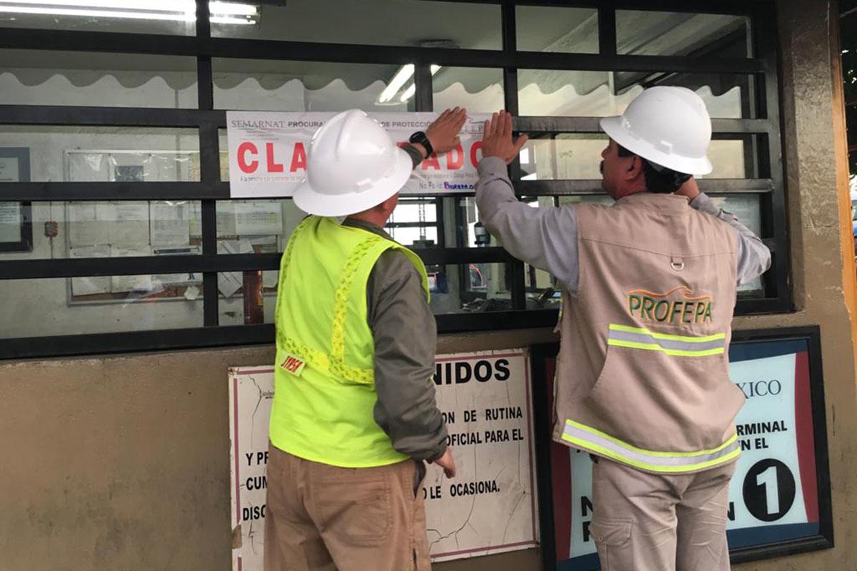 Grupo México, Profepa, Guaymas, Sonora, Bolsa Mexicana de Valores,