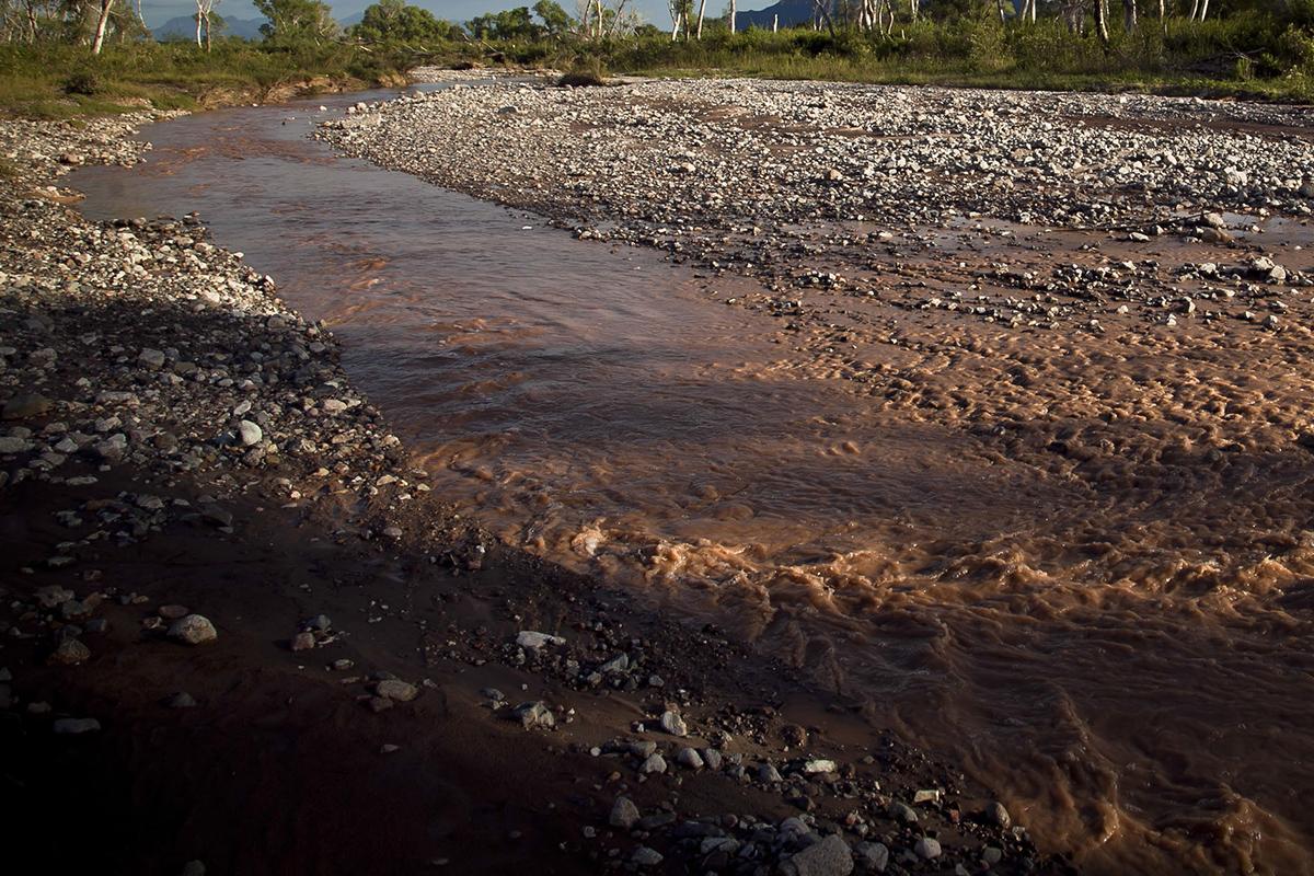 Grupo México, Semarnat, Mar de Cortés, río Bacánuchi, río Sonora, ecocidio,