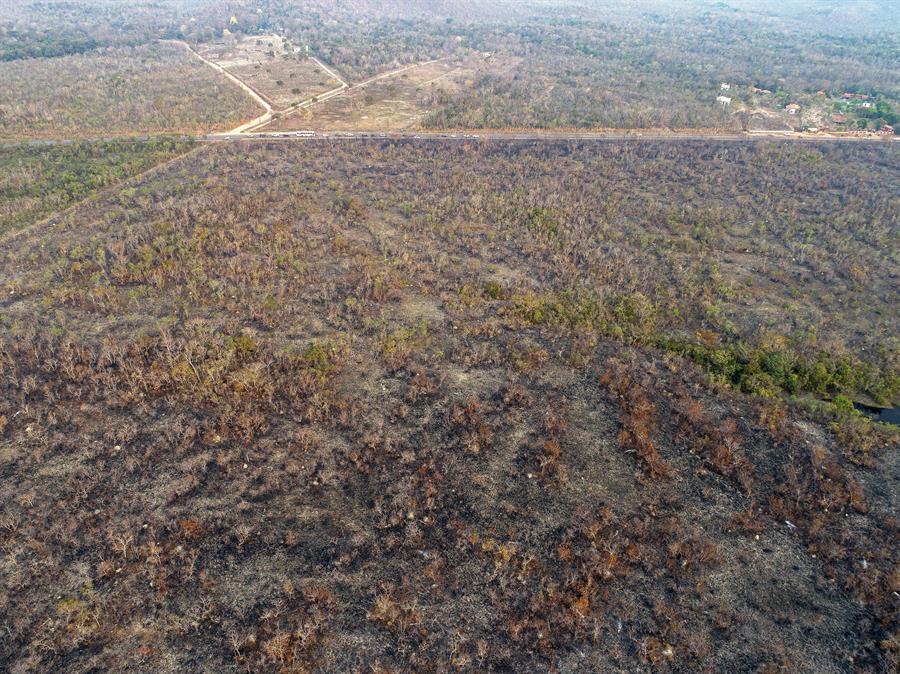 Amazonas, incendios forestales, Brasil, América Latina