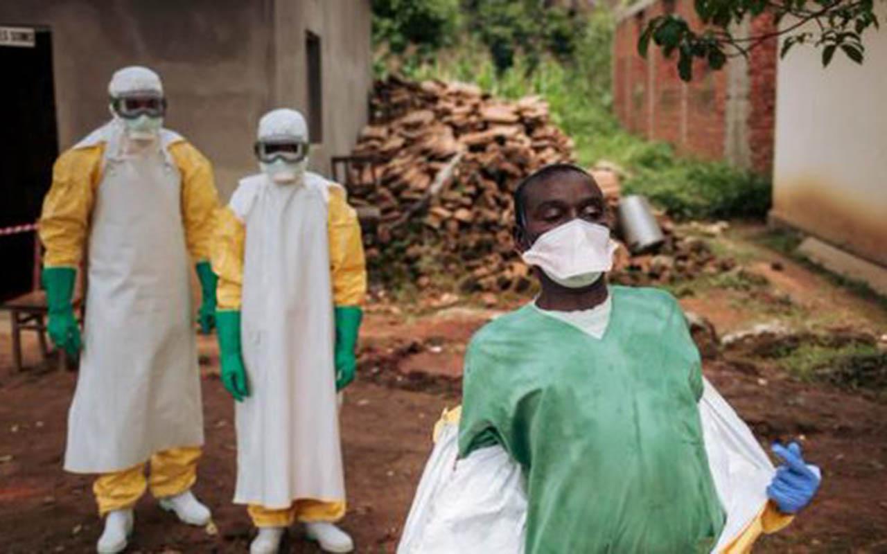 ébola, Congo, mundo, enfermedad, Médicos sin Fronteras,