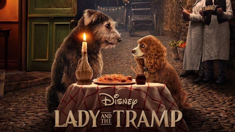 Poster de La dama y el vagabundo