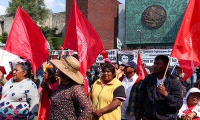 campesinos, diputados, bloqueo, Cámara de Diputados, Laura Rojas,