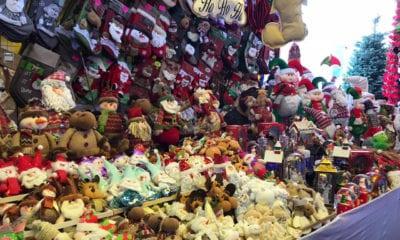 Comienza la venta de árboles de navidad en la CDMX