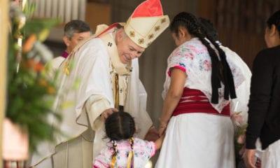 En la Basílica, Cardenal llama a fortalecer la familia