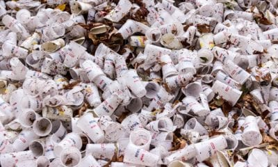 basura, plástico, contaminación