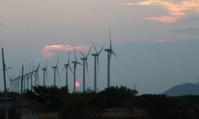 Energía eólica se ha triplicado en los últimos 5 años: AMDEE