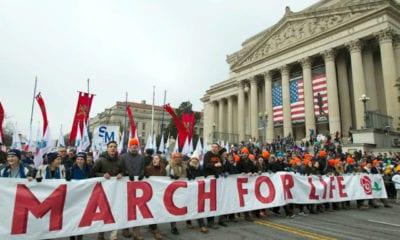 Marcharán por la vida en Washington