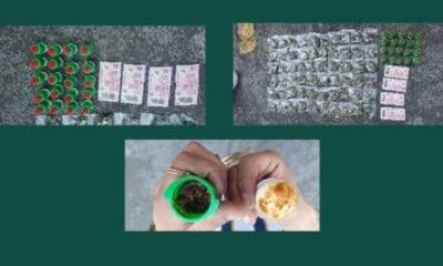 Venden dulces de tamarindo con droga en Ciudad Universitaria