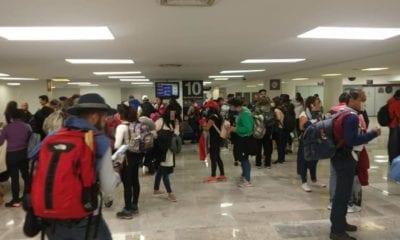 Regresaron mexicanos varados en Perú. Foto: SRE