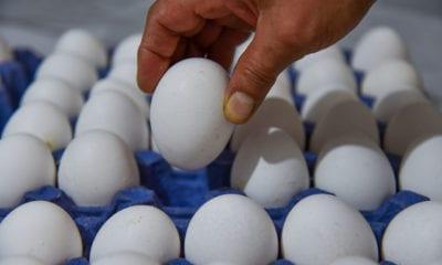 Multas de hasta 3 millones de pesos a quien encarezca huevo, frijol y tortilla