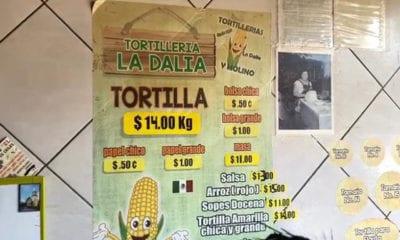 Prevén aumento del precio de la tortilla