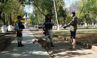 Aplican Plan DN-III en lugares de alto contagio de Covid-19 en México