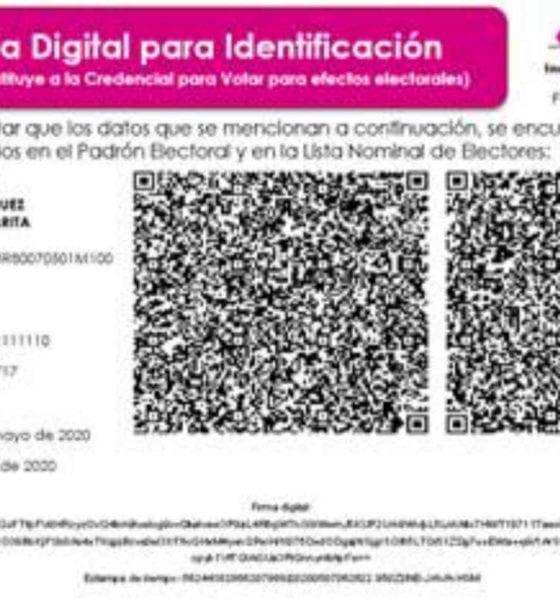 INE expide constancias digitales (Especial)