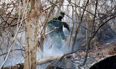 En México se combaten 73 incendios forestales de los cuales 98% fueron provocados o por descuido
