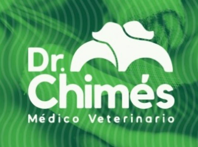 Dr Chimes