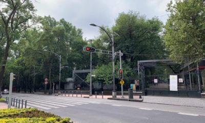 Reabren Bosques de la CDMX, menos Chapultepec