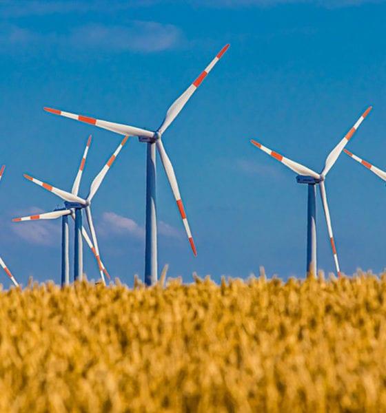 México y su gran potencial como generador de energía eólica