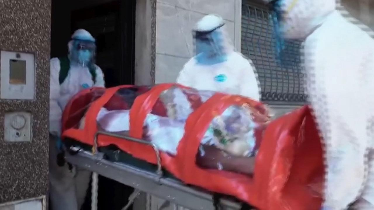 History Pandemia en tiempo real