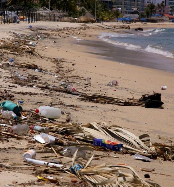 No hay condiciones para reactivar turismo en Acapulco