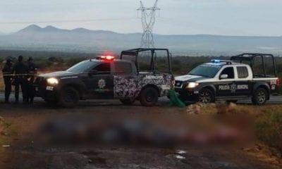 Arrojan 14 cadáveres en carretera de Zacatecas