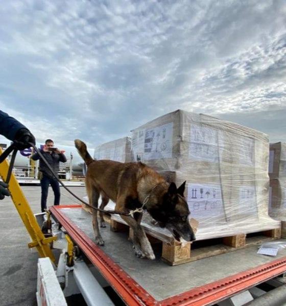 Procedentes de Estados Unidos, llegan ventiladores para pacientes de Covid