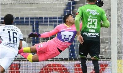 Pumas no pudo con los Bravos. Foto: Liga MX