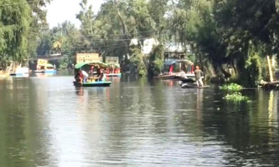 En semáforo naranja, reabren embarcaderos de Xochimilco