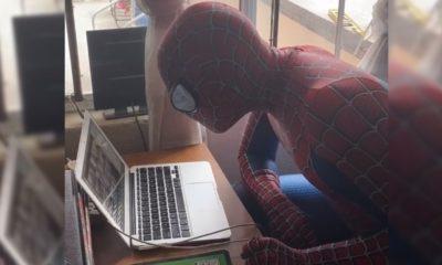 maestro, Spider-man, clases en línea