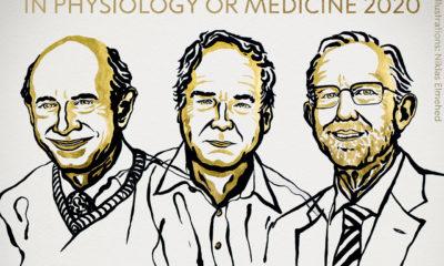 Entregan Nobel de Medicina a virólogos por descubrir hepatitis C