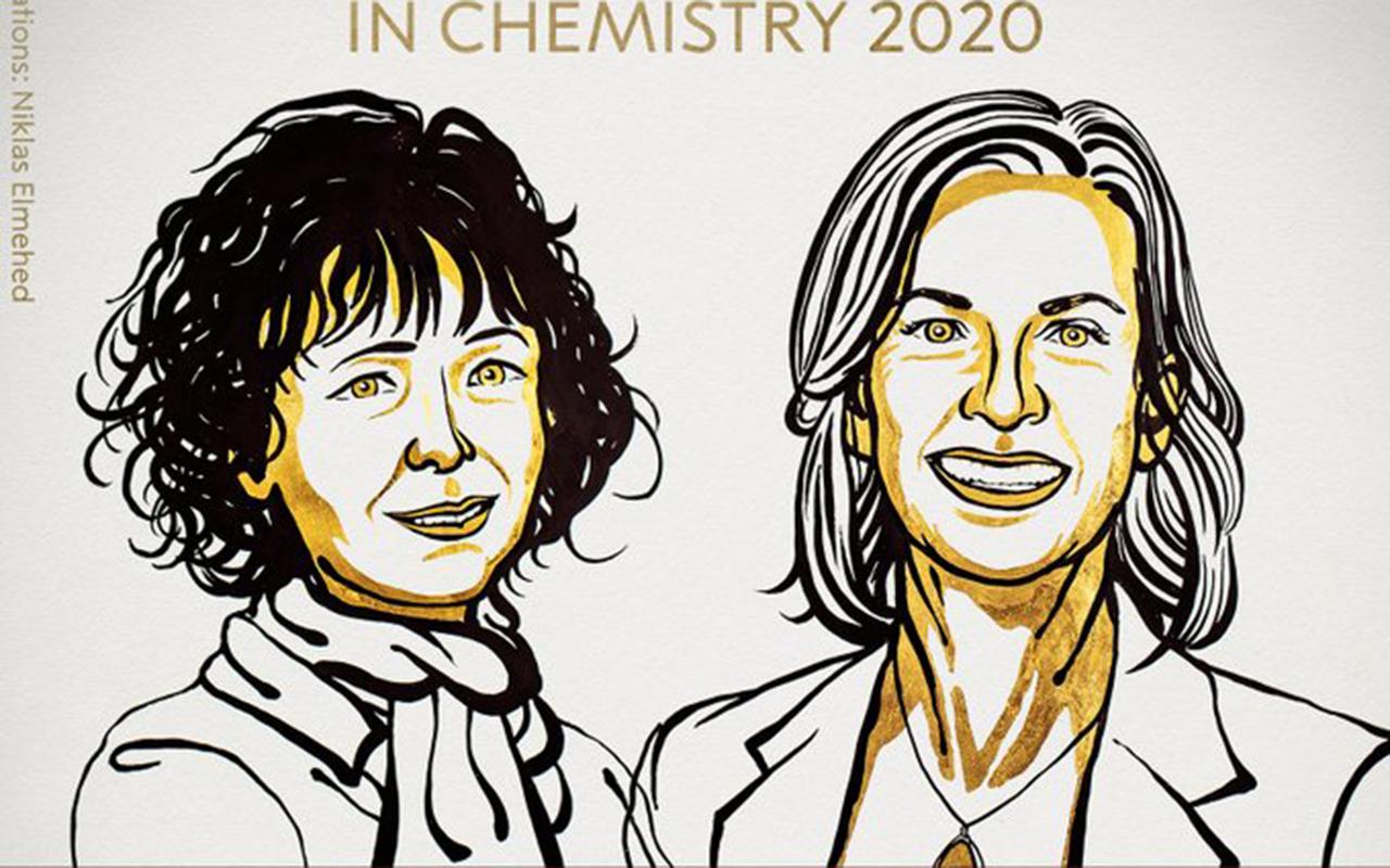 """Otorgan Nobel de Química a investigadoras por """"tijeras genéticas"""""""