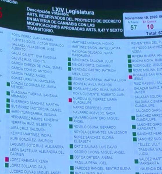 Senado aprueba uso lúdico de marihuana