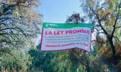 Se recuperan 42 hectáreas protegidas del Parque Nacional del Tepeyac