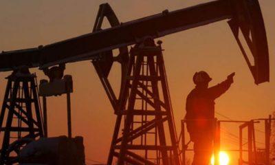 Recibe Hacienda 2 mil 380 mdd por coberturas petroleras en 2020