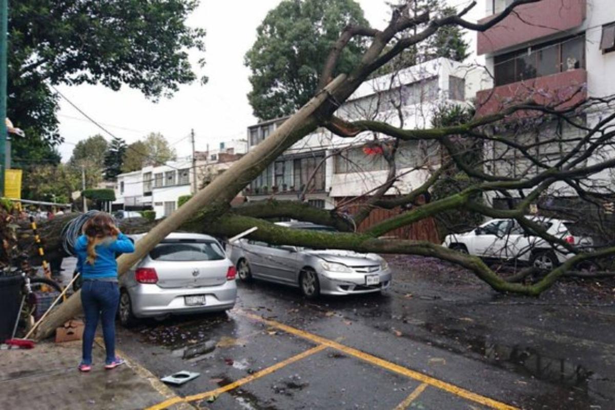 Activan alerta amarilla en cinco alcaldías por fuertes vientos en CDMX