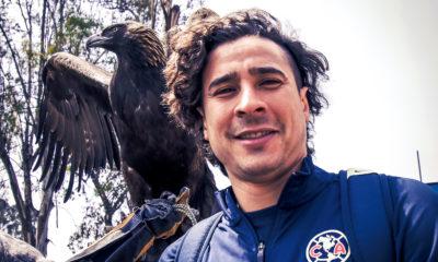 Guillermo Ochoa a punto de hacer historia. Foto: Twitter América