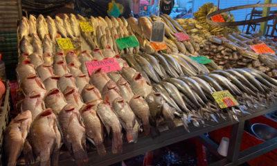Covid pega a ventas de pescado en la Nueva Viga