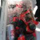 Encuentran vacunas Sputnik V ocultas entre cocas y golosinas