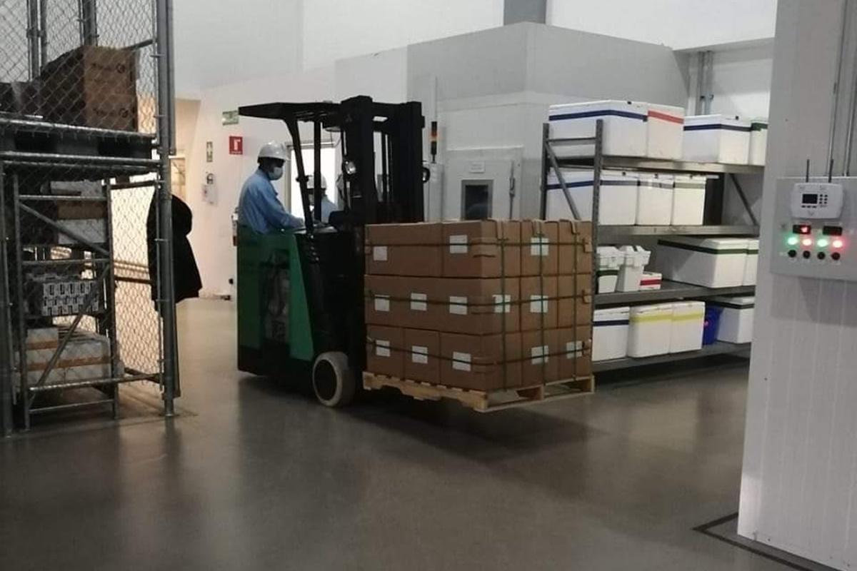 Llega nuevo cargamento de vacunas. Foto: Twitter