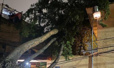 Restablecen suministro eléctrico en Valle de México afectado por lluvias