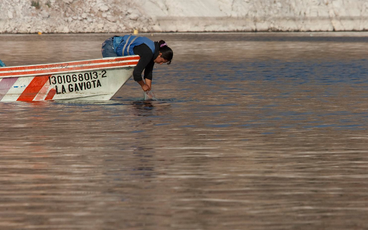 En 2023 dejarán de tomar agua contaminada en La Laguna