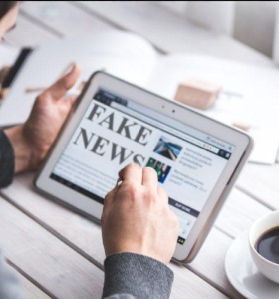 miedo y desinformación en contexto político